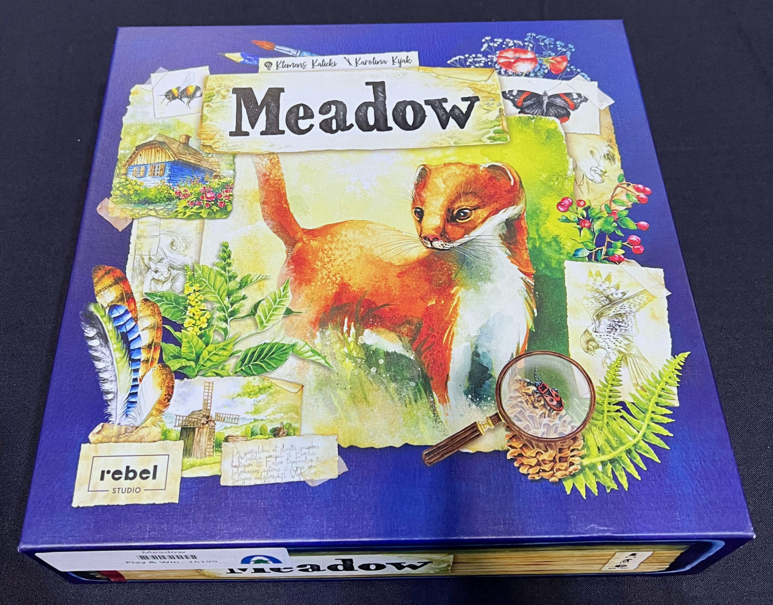Meadow box scaled